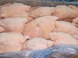 Frozen whole carcasses hens