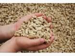Отруби пшеничные - фото 1