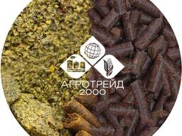 Rapeseed meal, high-protein producer