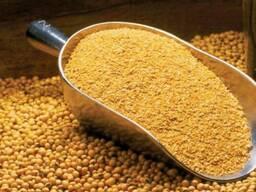 Soya Bean Meal for sale whatsapp